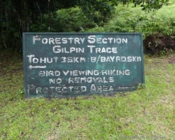 Gilping Trace